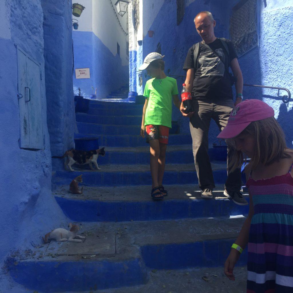 Błękitne Miasto Szafszawan. Maroko